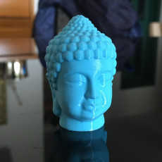 Picture of print of Buddha Head 3D Scan This print has been uploaded by Michele Paini