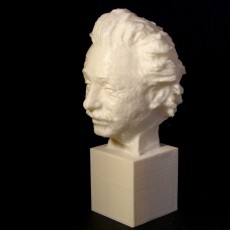 Picture of print of Einstein Bust 3D Scan (Jo Davidson)