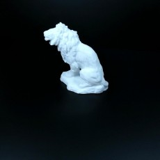 Picture of print of Lion Sculpture (3D Scan) This print has been uploaded by Li WEI Bing