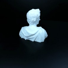 Picture of print of Julius Caesar Bust (3D Scan)