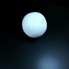 Picture of print of Orange 3D Scan