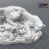 Georges Gardet - Drame Au Désert (Statue 3D Scan) image