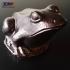 Frog Sculpture 3D Scan image