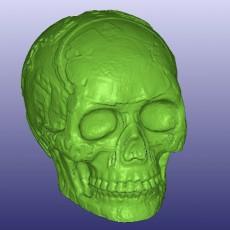 Mayan Skull 3D Scan (Hollow)
