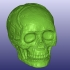 Mayan Skull 3D Scan (Hollow) image