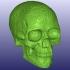 Celtic Skull 3D Scan (Hollow) image