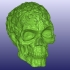 Spook Skull 3D Scan (Hollow) image