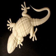 Picture of print of Gecko