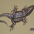 Gecko image