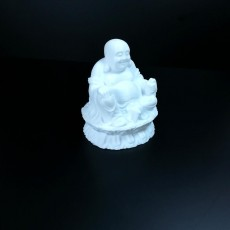 Picture of print of Buddha Sculpture 3D Scan