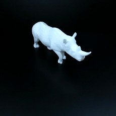 Picture of print of Rhino