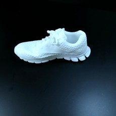 Picture of print of Reebok Realflex 3D Scan