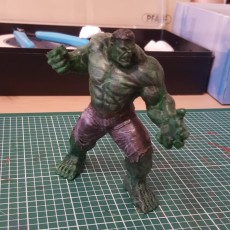 Picture of print of Hulk 3D Scan