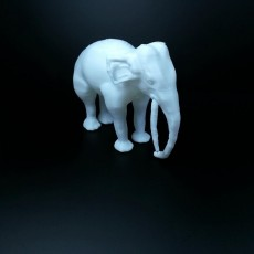Picture of print of Chinese elephant