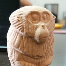 Picture of print of Satiaru - Kubo Monkey Charm