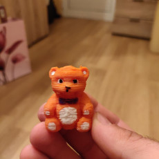 Picture of print of Teddy Bear