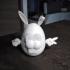 Mr. Easter Head image
