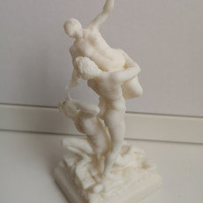 Picture of print of Rape of the Sabine - Giambologna Florence - My Version
