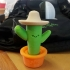 Juan the Cactus! image