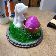 Picture of print of Grassy Easter Egg Keeper