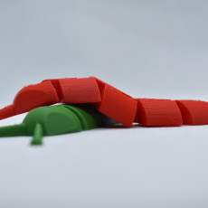 Picture of print of Articulated Slug