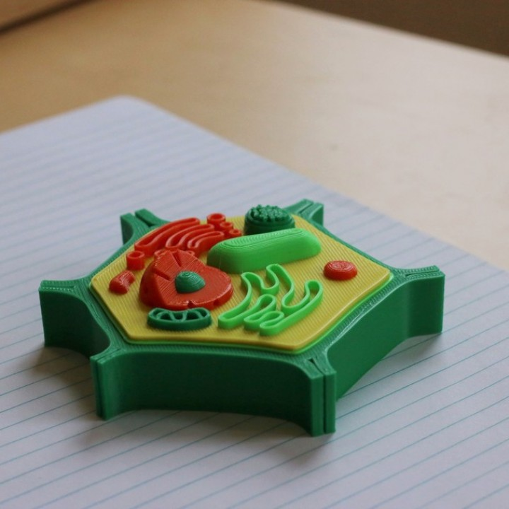 3D Printable Multi-Color Mini Plant Cell by Mosaic ...