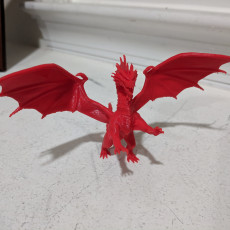 Picture of print of Red Dragon This print has been uploaded by Ellswor