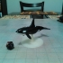 Killer Whale for Tabletop Gaming image