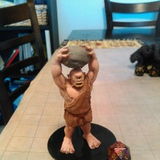 Cyclops for Tabletop gaming