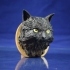 Long Hair Cat Bust Portrait image