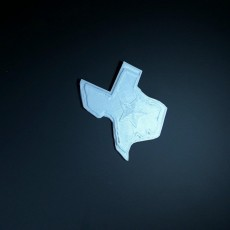 Picture of print of Texas Chip