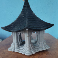 Picture of print of Bird Temple