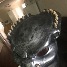 Picture of print of Predator mask