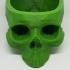 skull plant pot image