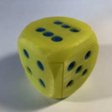 Picture of print of RealDiceBox