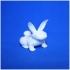 paaske-kanin-bunny_agnoletti-jesper image