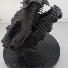 Picture of print of Dragonology II