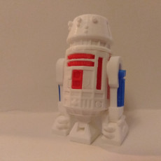 Picture of print of R5D4