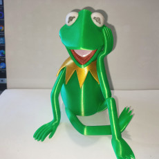 Picture of print of Kermit the Frog