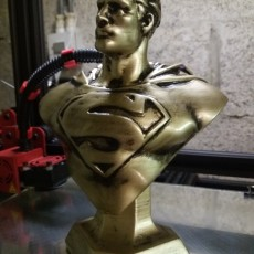 Picture of print of Man of Steel Bust 这个打印已上传 Grégory Lamouline