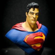 Picture of print of Man of Steel Bust 这个打印已上传 David T. Roa