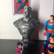 Picture of print of Man of Steel Bust 这个打印已上传 Lee DeLapp