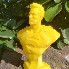 Picture of print of Man of Steel Bust 这个打印已上传 Franco MA