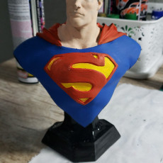 Picture of print of Man of Steel Bust 这个打印已上传 Eduardo Diogo Garcia