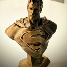 Picture of print of Man of Steel Bust 这个打印已上传 Wade tubman