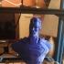 Man of Steel Bust print image
