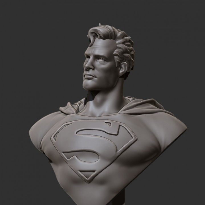Man of Steel Bust