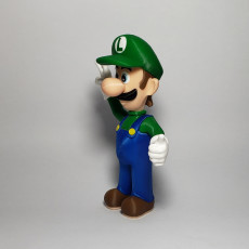 Picture of print of Luigi from Mario games - Multi-color