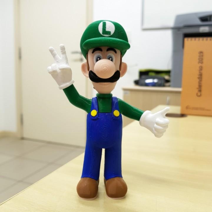 Luigi from Mario games - Multi-color