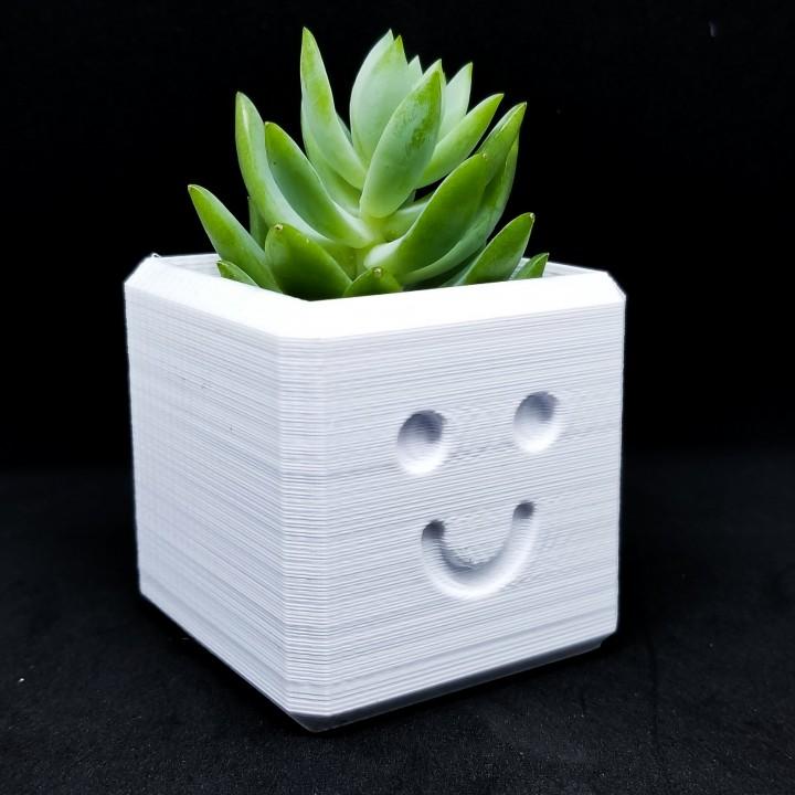 Happy Planter / 3D printed planter